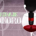 maridaje-sonoro-vinos-sanz
